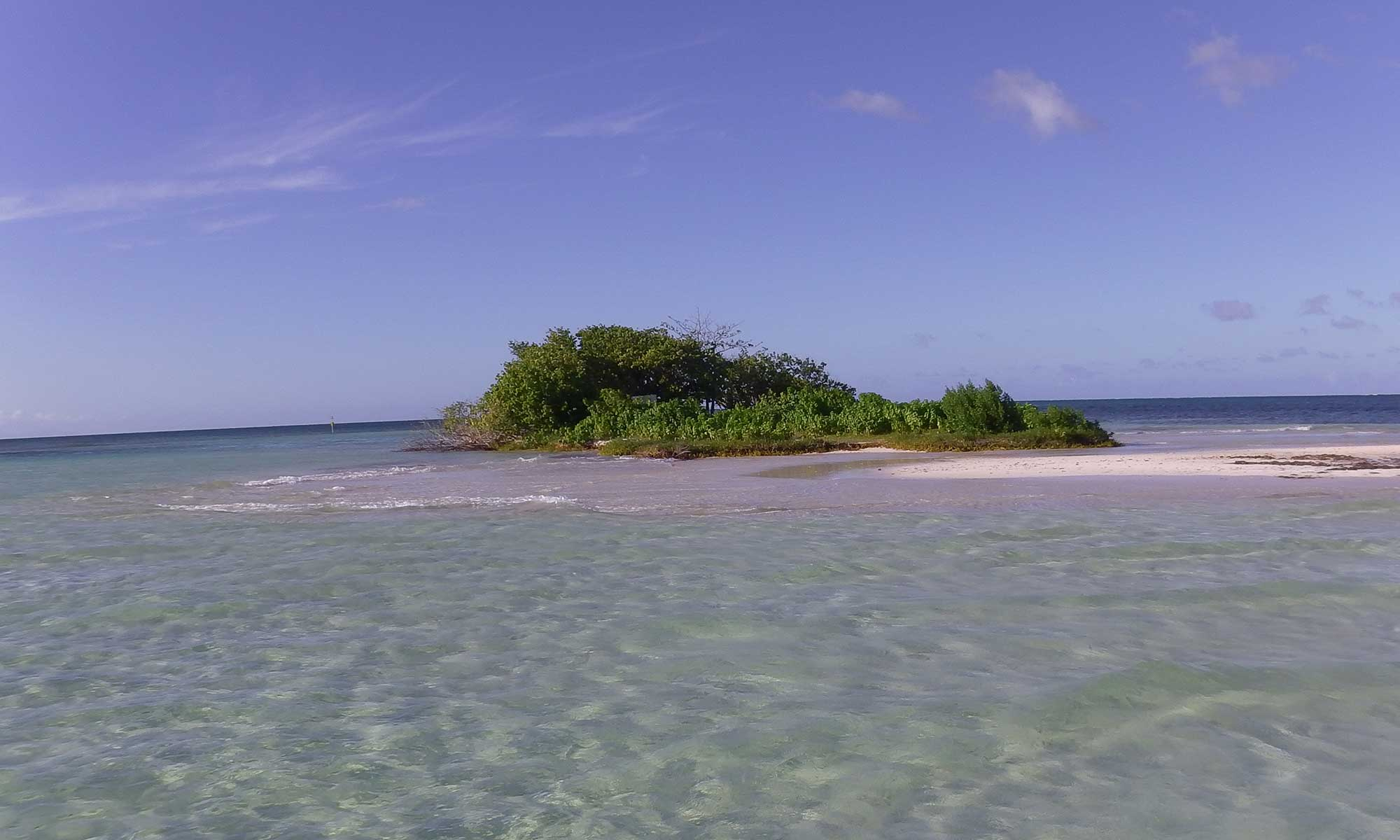 excursion en mer Guadeloupe îlet blanc
